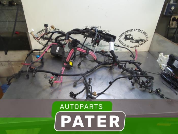 Used Renault Megane Iii Grandtour  Kz  1 5 Dci 110 Wiring Harness - 240117692r