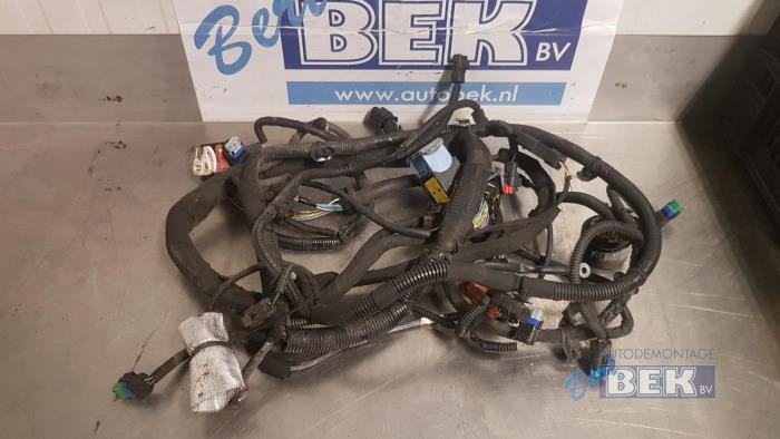 Wondrous Used Peugeot 207 Wa Wc Wm 1 4 Hdi Wiring Harness 9671294880A01 Wiring Digital Resources Funiwoestevosnl